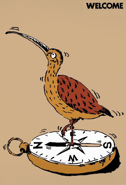 ポスターアーティスト秋山孝が1981年にエコロジーをテーマに制作したポスター「Welcome (scolopacidae) 」