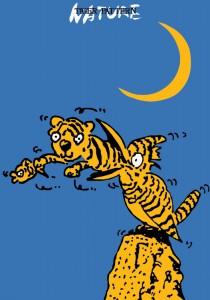 ポスターアーティスト秋山孝が1985年にエコロジーをテーマに制作したポスター「Tiger Pattern - Nature」